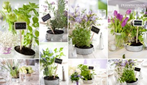 centre_de_table-mariage-aromates